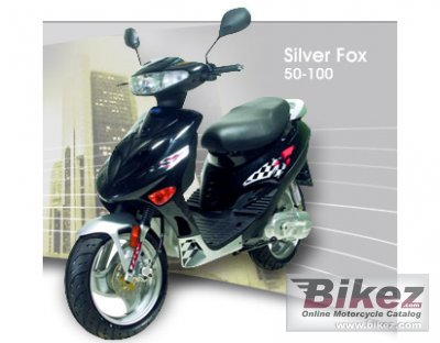 Adly Silver Fox 100 2008