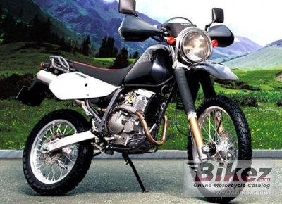 Suzuki Djebel 250XC 2008