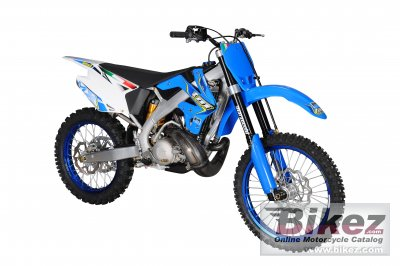TM racing MX 300 2011