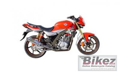 Tiger Boxer 250 RS 2011